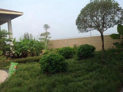 四川威鹏电缆制造股份有限公司--办公室大楼屋顶花园